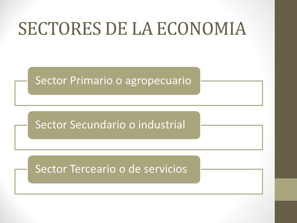 SECTORES DE LA ECONOMIA Sector Primario o agropecuarioSector Secundario o industrialSector Terceario o de servicios