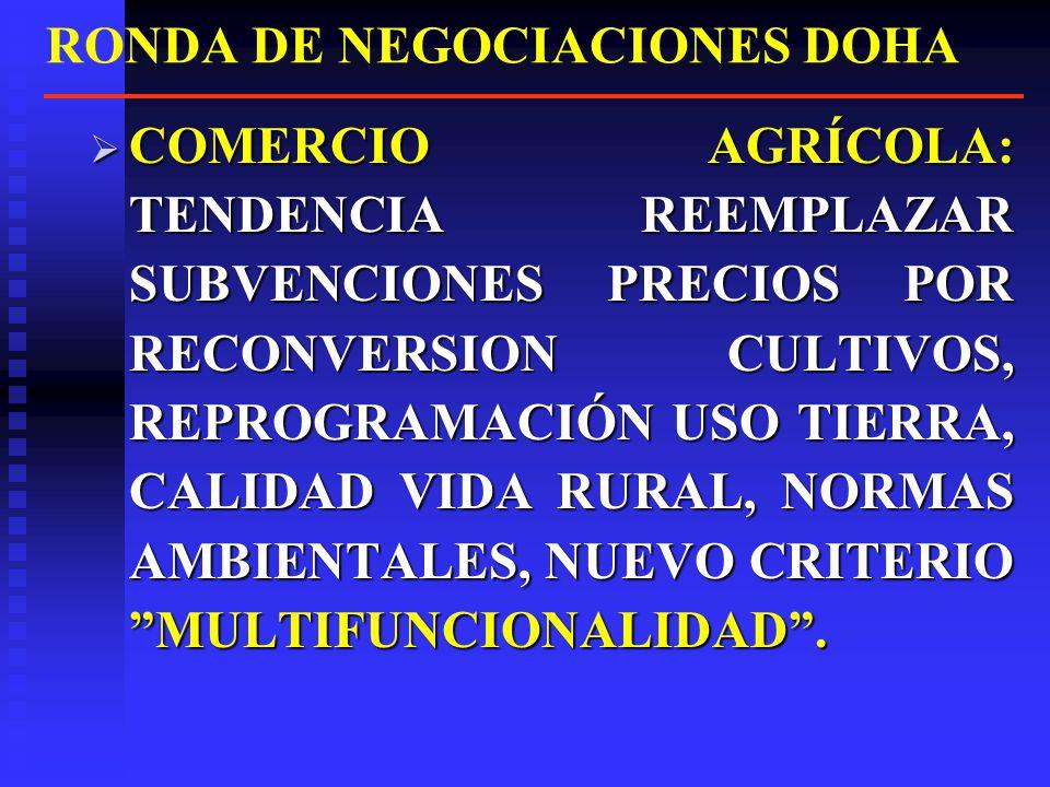 NUEVA RONDA DE NEGOCIACIONES REUNION MINISTERIAL OMC EN DOHA – QATAR NOVBRE 2001, ACORDÓ NUEVA RONDA DE NEGOCIACIONES REUNION MINISTERIAL OMC EN DOHA – QATAR NOVBRE 2001, ACORDÓ NUEVA RONDA DE NEGOCIACIONES NUEVA RONDA ENTRE 2002 Y 2005.