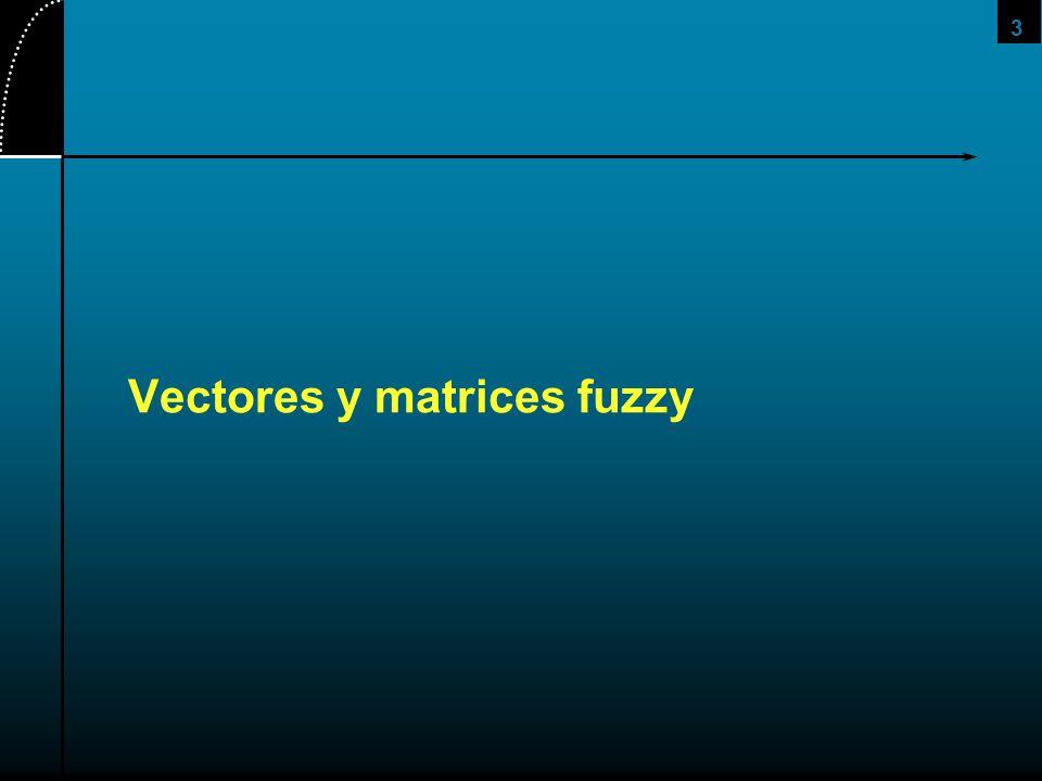 4 Un vector fuzzy es un vector cuyos elementos tienen valores dentro del intervalo [0,1] Una matriz fuzzy es la aglomeracion de vectores fuzzy.