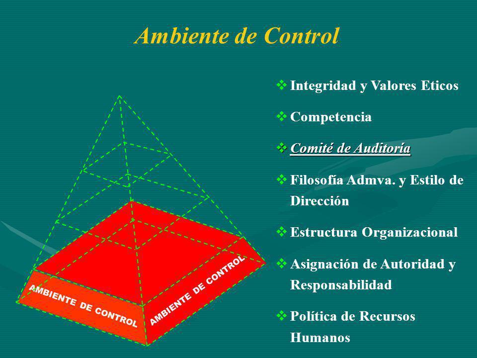 AMBIENTE DE CONTROL Integridad y Valores Eticos Competencia Comité de Auditoría Comité de Auditoría Filosofía Admva. y Estilo de Dirección Estructura