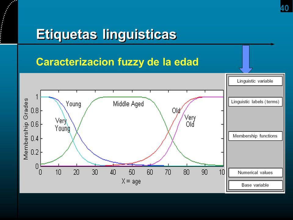 40 Etiquetas linguisticas Caracterizacion fuzzy de la edad