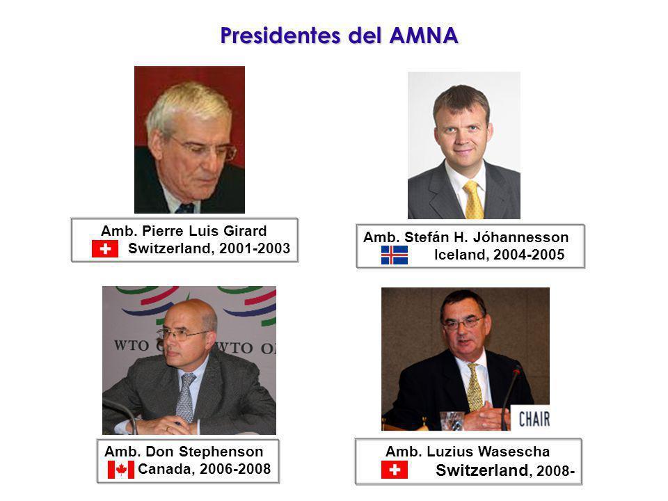 Presidentes del AMNA Amb. Pierre Luis Girard Switzerland, 2001-2003 Amb. Luzius Wasescha Switzerland, 2008- Amb. Stefán H. Jóhannesson Iceland, 2004-2