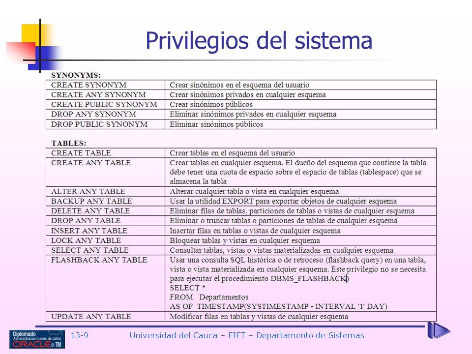 13-9 Universidad del Cauca – FIET – Departamento de Sistemas Privilegios del sistema