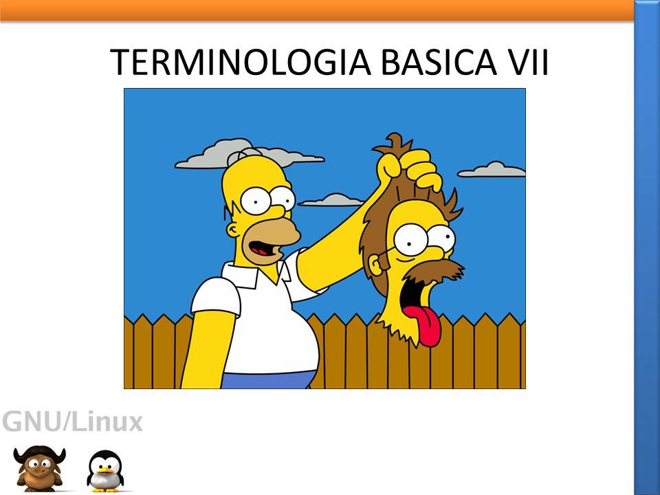 TERMINOLOGIA BASICA VII