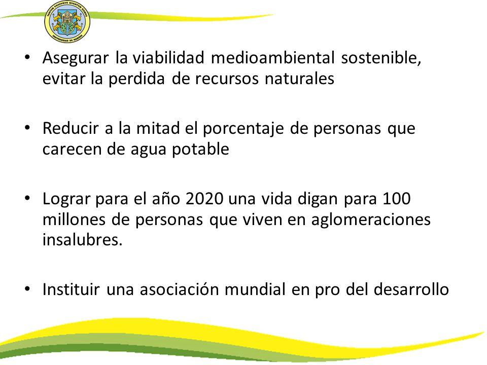 Asegurar la viabilidad medioambiental sostenible, evitar la perdida de recursos naturales Reducir a la mitad el porcentaje de personas que carecen de