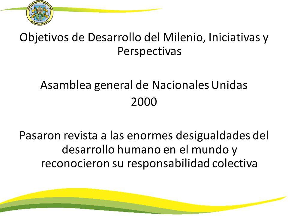 Objetivos de Desarrollo del Milenio, Iniciativas y Perspectivas Asamblea general de Nacionales Unidas 2000 Pasaron revista a las enormes desigualdades