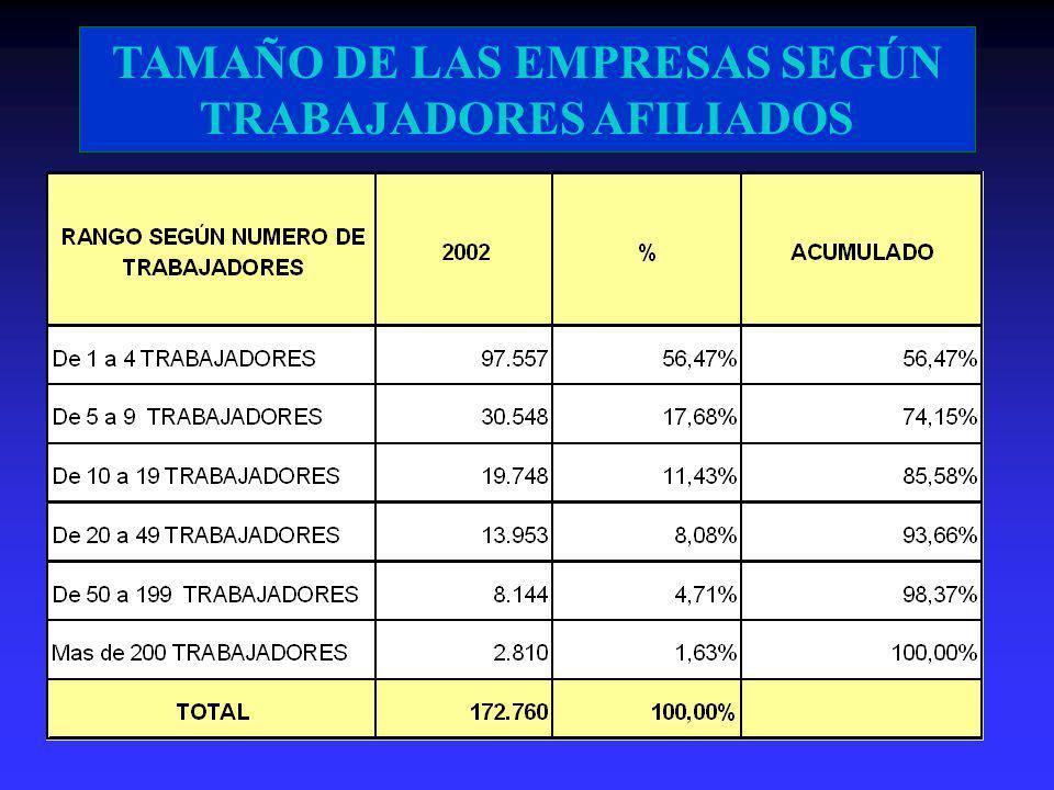 TAMAÑO DE LAS EMPRESAS SEGÚN TRABAJADORES AFILIADOS