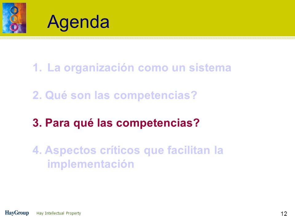 Hay Intellectual Property 12 Agenda 1.La organización como un sistema 2. Qué son las competencias? 3. Para qué las competencias? 4. Aspectos críticos