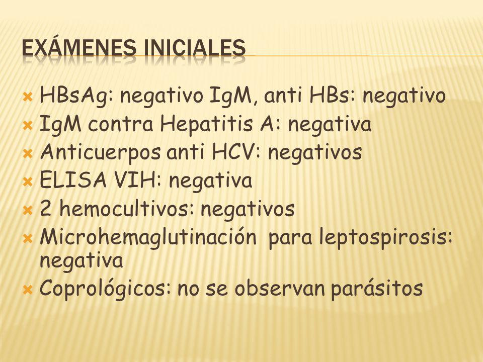 HBsAg: negativo IgM, anti HBs: negativo IgM contra Hepatitis A: negativa Anticuerpos anti HCV: negativos ELISA VIH: negativa 2 hemocultivos: negativos Microhemaglutinación para leptospirosis: negativa Coprológicos: no se observan parásitos