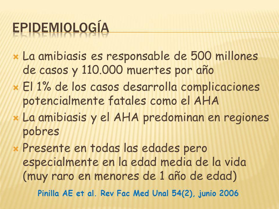 La amibiasis es responsable de 500 millones de casos y 110.000 muertes por año El 1% de los casos desarrolla complicaciones potencialmente fatales como el AHA La amibiasis y el AHA predominan en regiones pobres Presente en todas las edades pero especialmente en la edad media de la vida (muy raro en menores de 1 año de edad) Pinilla AE et al.