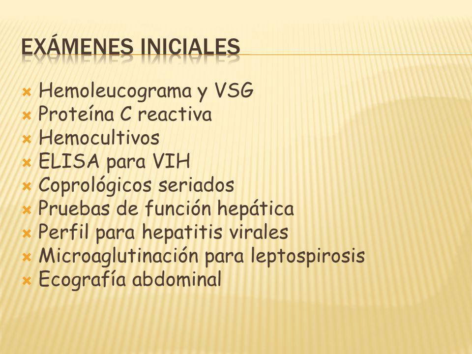 Hemoleucograma y VSG Proteína C reactiva Hemocultivos ELISA para VIH Coprológicos seriados Pruebas de función hepática Perfil para hepatitis virales Microaglutinación para leptospirosis Ecografía abdominal
