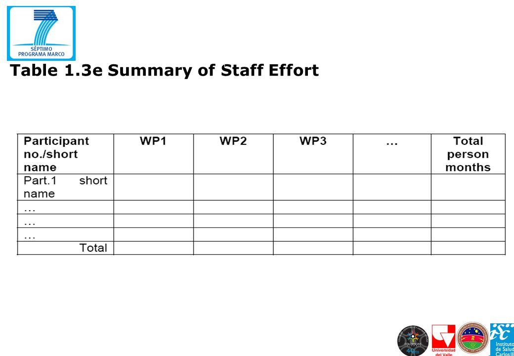 Table 1.3e Summary of Staff Effort