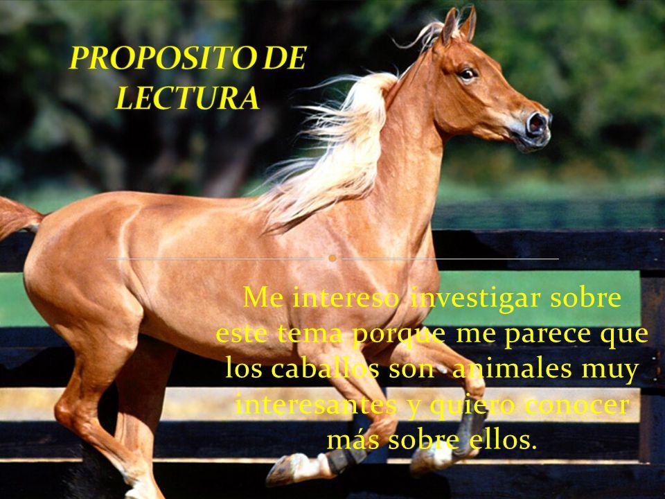 Me intereso investigar sobre este tema porque me parece que los caballos son animales muy interesantes y quiero conocer más sobre ellos.