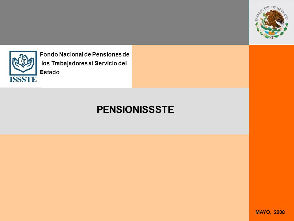 MAYO, 2008 PENSIONISSSTE Fondo Nacional de Pensiones de los Trabajadores al Servicio del Estado