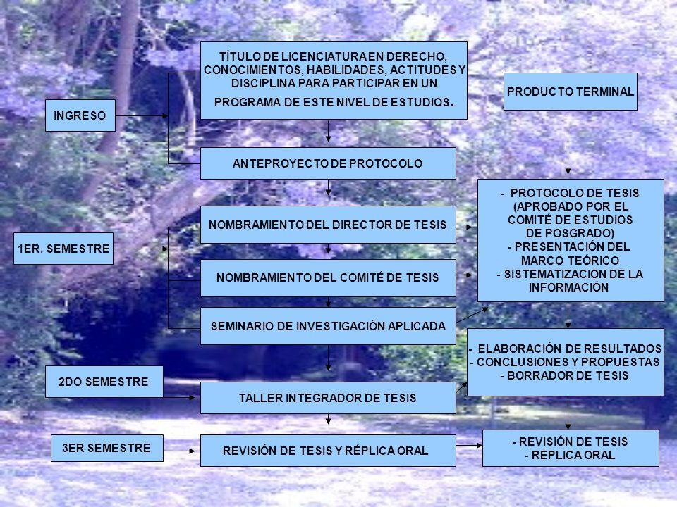 INGRESO TÍTULO DE LICENCIATURA EN DERECHO, CONOCIMIENTOS, HABILIDADES, ACTITUDES Y DISCIPLINA PARA PARTICIPAR EN UN PROGRAMA DE ESTE NIVEL DE ESTUDIOS