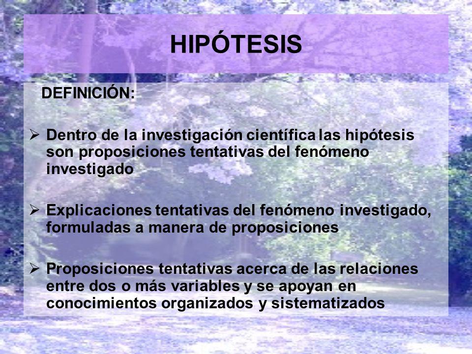 HIPÓTESIS DEFINICIÓN: Dentro de la investigación científica las hipótesis son proposiciones tentativas del fenómeno investigado Explicaciones tentativ
