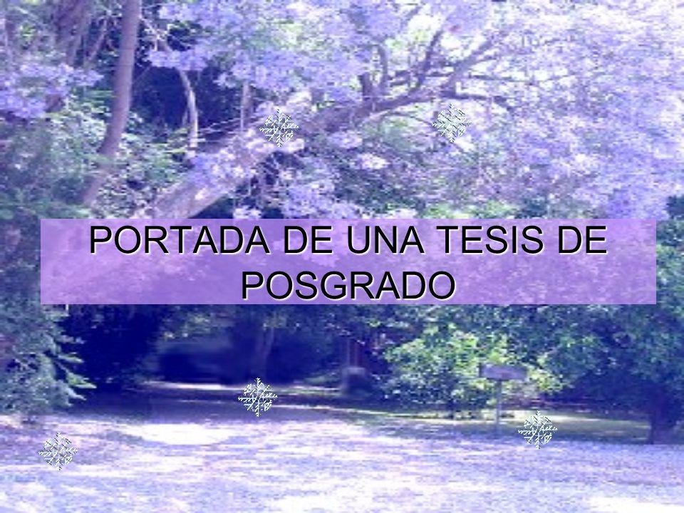 PORTADA DE UNA TESIS DE POSGRADO