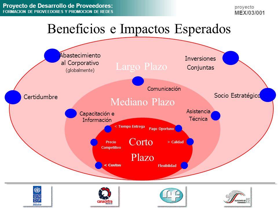 Proyecto de Desarrollo de Proveedores: FORMACION DE PROVEEDORES Y PROMOCION DE REDES proyecto MEX/03/001 Largo Plazo Mediano Plazo Beneficios e Impact