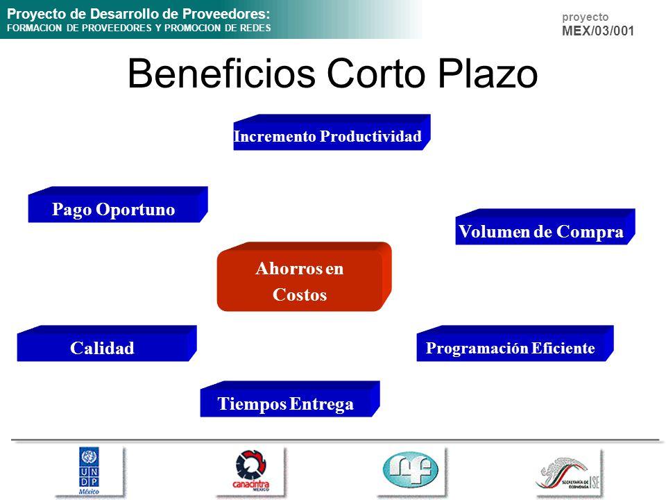 Proyecto de Desarrollo de Proveedores: FORMACION DE PROVEEDORES Y PROMOCION DE REDES proyecto MEX/03/001 Beneficios Corto Plazo Ahorros en Costos Pago Oportuno Incremento Productividad Volumen de Compra Calidad Tiempos Entrega Programación Eficiente