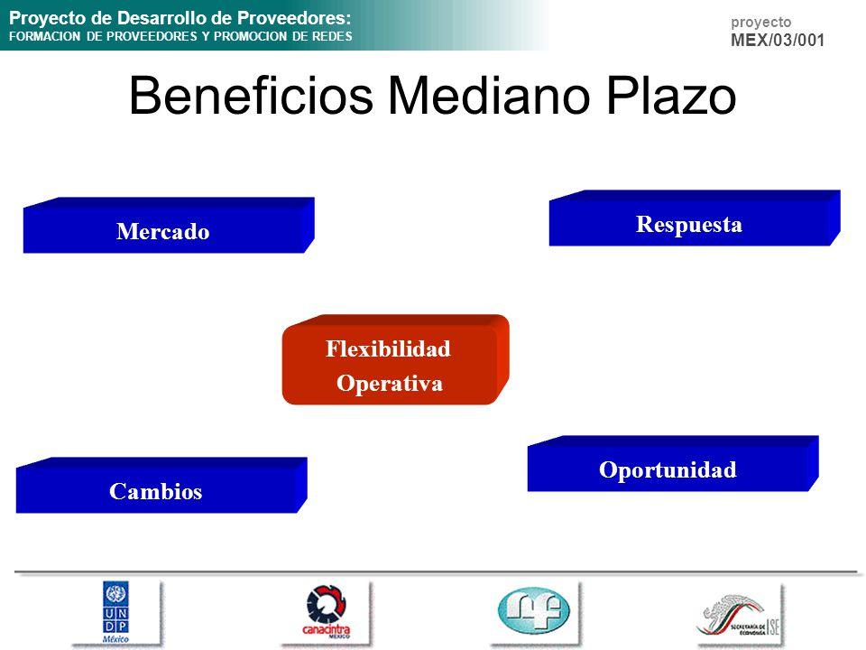 Proyecto de Desarrollo de Proveedores: FORMACION DE PROVEEDORES Y PROMOCION DE REDES proyecto MEX/03/001 Beneficios Mediano Plazo Flexibilidad Operativa Mercado Respuesta Cambios Oportunidad