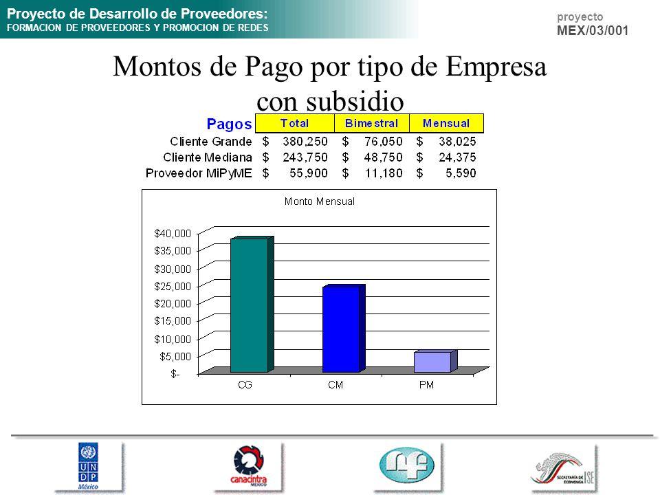 Proyecto de Desarrollo de Proveedores: FORMACION DE PROVEEDORES Y PROMOCION DE REDES proyecto MEX/03/001 Montos de Pago por tipo de Empresa con subsid