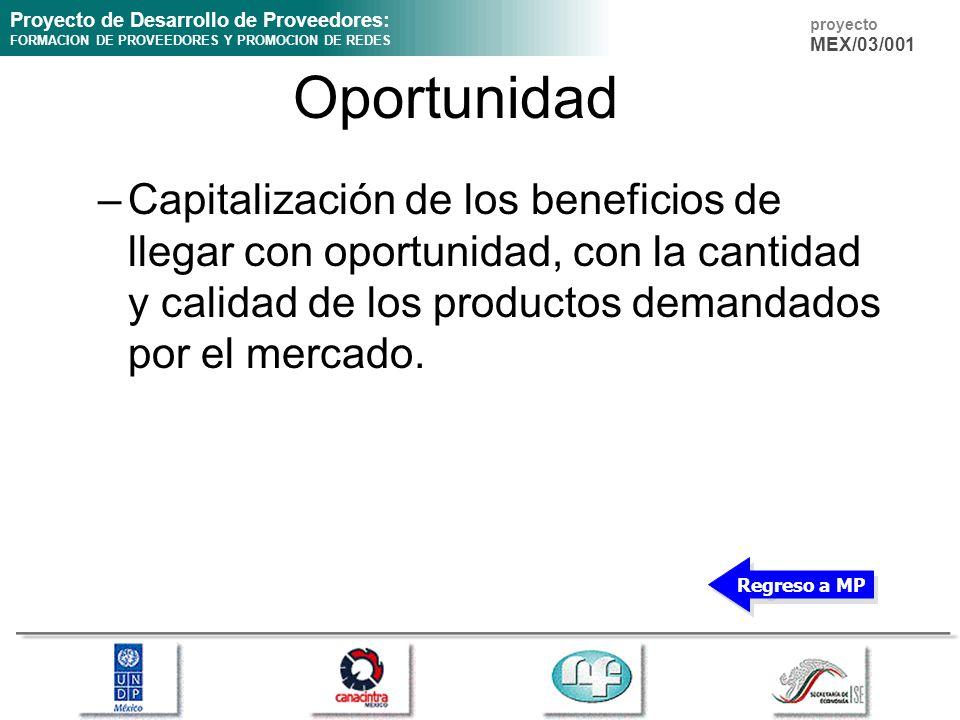 Proyecto de Desarrollo de Proveedores: FORMACION DE PROVEEDORES Y PROMOCION DE REDES proyecto MEX/03/001 Oportunidad –Capitalización de los beneficios