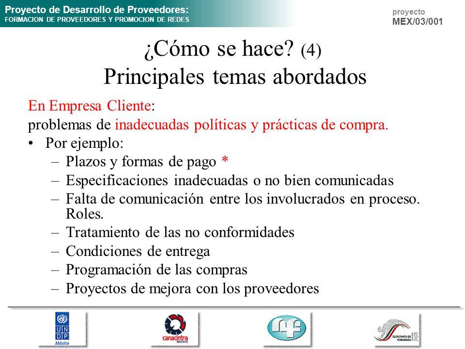 Proyecto de Desarrollo de Proveedores: FORMACION DE PROVEEDORES Y PROMOCION DE REDES proyecto MEX/03/001 ¿Cómo se hace? (4) Principales temas abordado