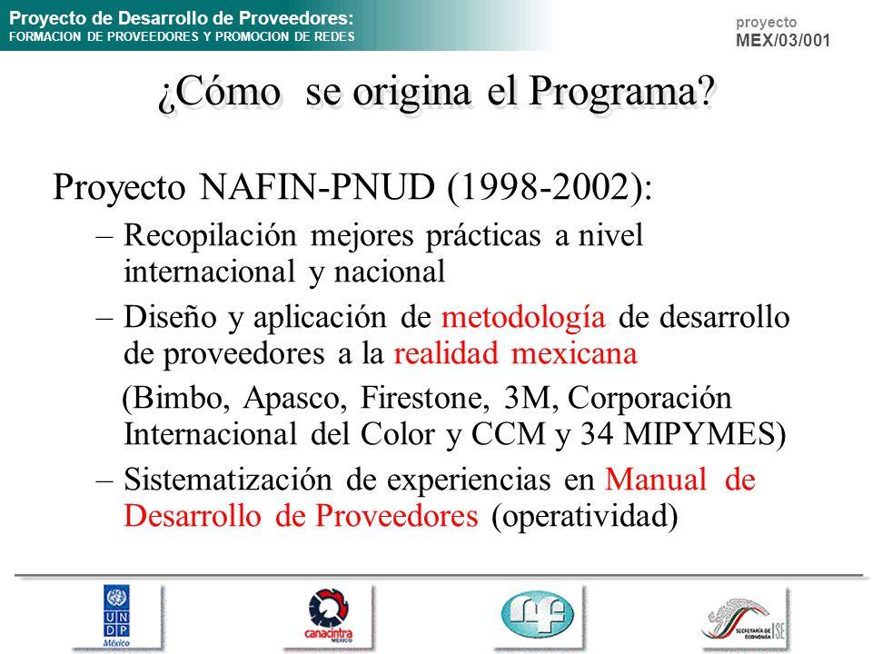 Proyecto de Desarrollo de Proveedores: FORMACION DE PROVEEDORES Y PROMOCION DE REDES proyecto MEX/03/001 ¿Cómo se origina el Programa? Proyecto NAFIN-