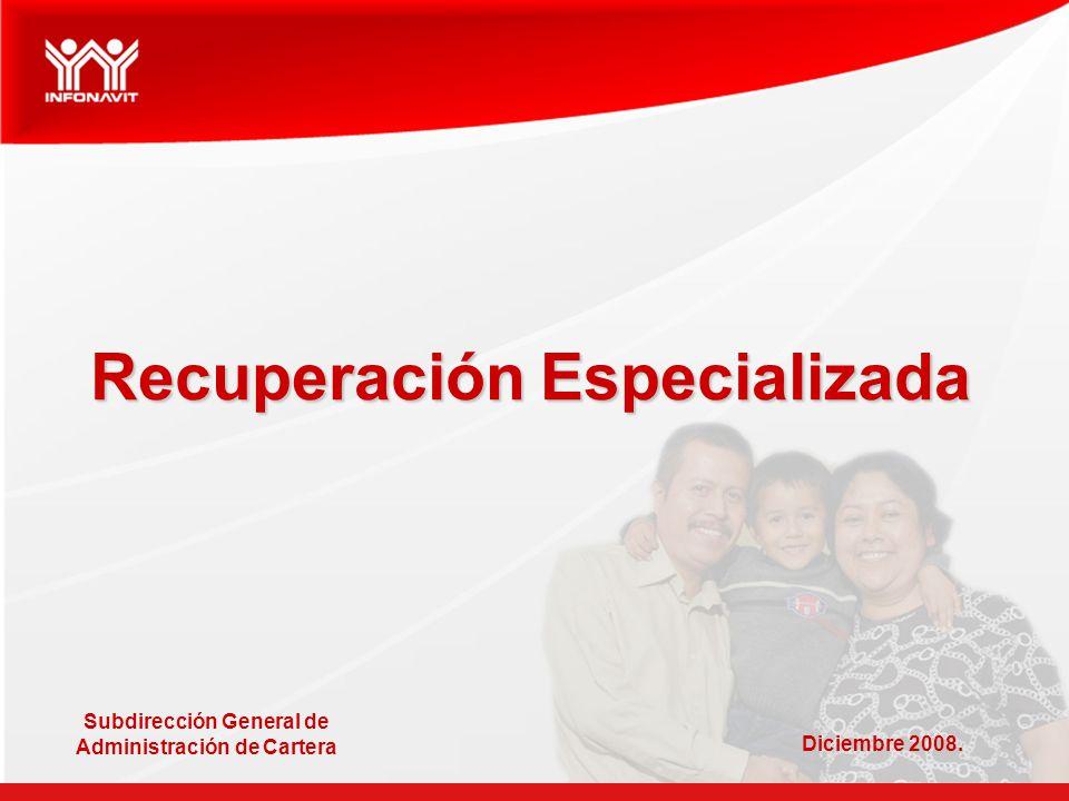 Recuperación Especializada Subdirección General de Administración de Cartera Diciembre 2008.