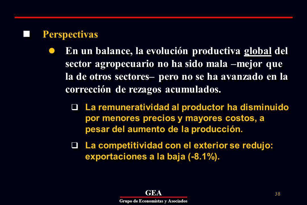 GEAGEA Grupo de Economistas y Asociados 38 Perspectivas En un balance, la evolución productiva global del sector agropecuario no ha sido mala –mejor que la de otros sectores– pero no se ha avanzado en la corrección de rezagos acumulados.