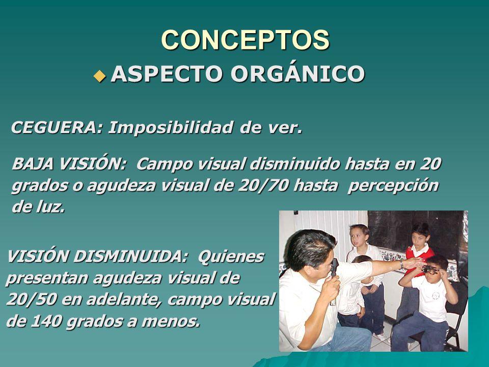CONCEPTOS ASPECTO ORGÁNICO ASPECTO ORGÁNICO CEGUERA: Imposibilidad de ver.