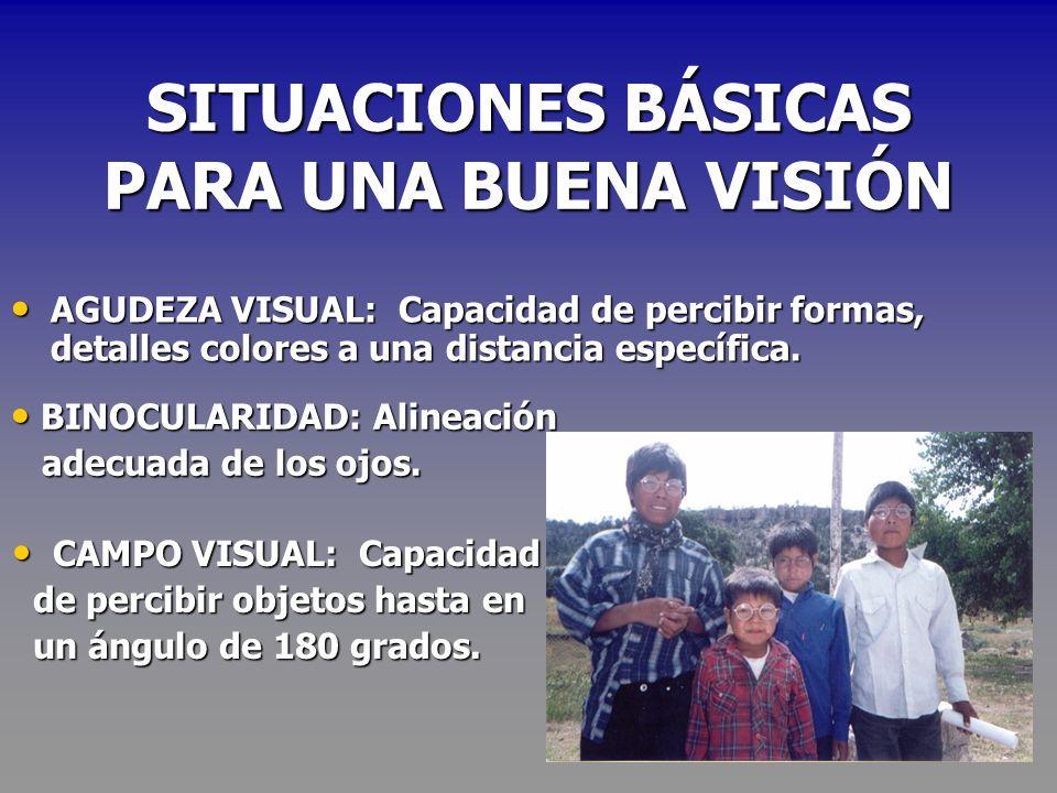 CONCEPTOS ASPECTO ORGÁNICO ASPECTO ORGÁNICO CEGUERA: Imposibilidad de ver. CEGUERA: Imposibilidad de ver. VISIÓN DISMINUIDA: Quienes presentan agudeza
