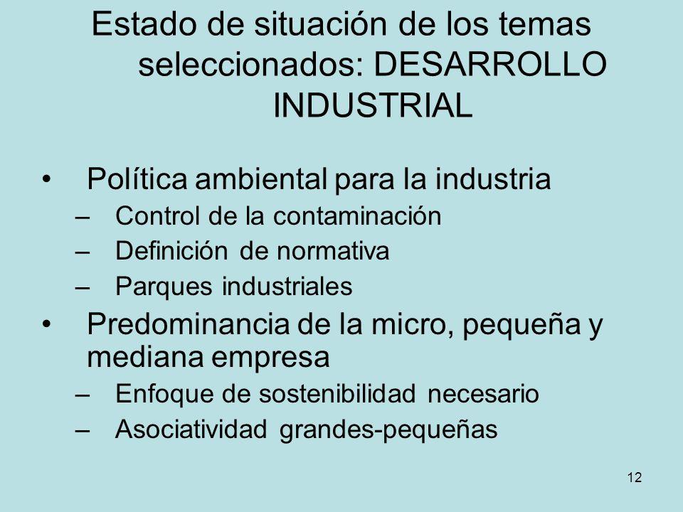 12 Estado de situación de los temas seleccionados: DESARROLLO INDUSTRIAL Política ambiental para la industria –Control de la contaminación –Definición