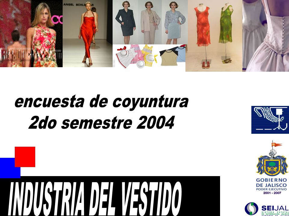 42 FUENTE : SEIJAL - Cámara Nacional de la Industria del Vestido Delegación Jalisco; en base a investigación directa.