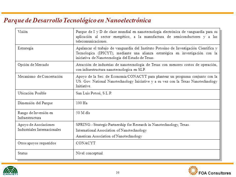 FOA Consultores Parque de Desarrollo Tecnológico en Nanoelectrónica VisiónParque de I y D de clase mundial en nanotecnología electrónica de vanguardia