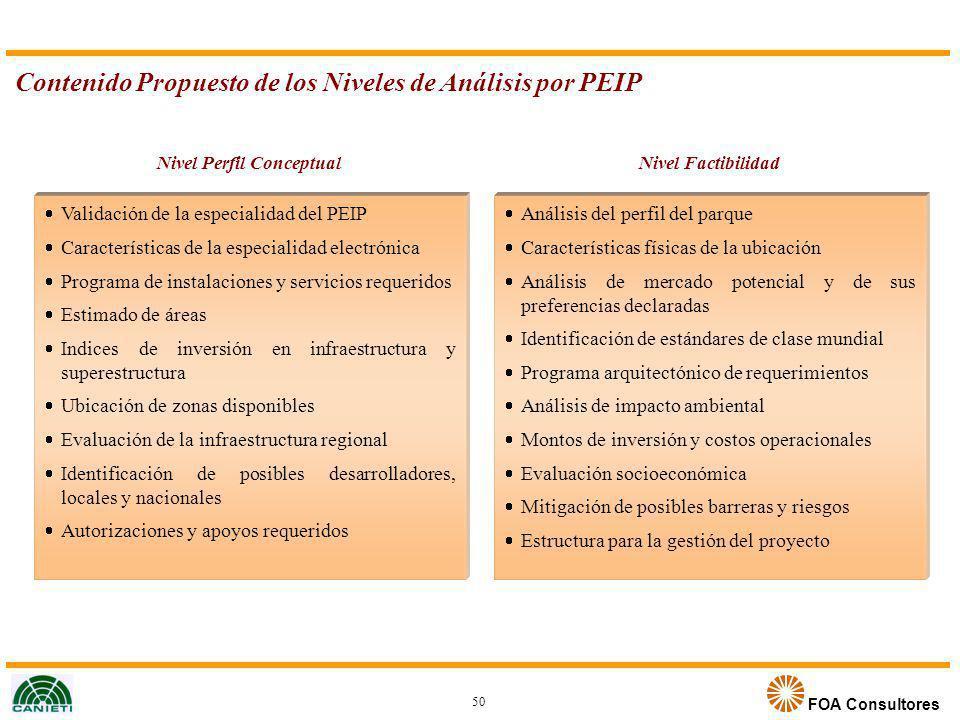 FOA Consultores Contenido Propuesto de los Niveles de Análisis por PEIP Nivel Perfil Conceptual Validación de la especialidad del PEIP Características