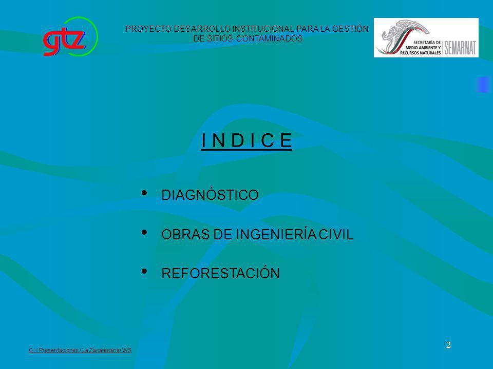 2 DIAGNÓSTICO OBRAS DE INGENIERÍA CIVIL REFORESTACIÓN I N D I C E PROYECTO DESARROLLO INSTITUCIONAL PARA LA GESTIÓN DE SITIOS CONTAMINADOS C: / Presen