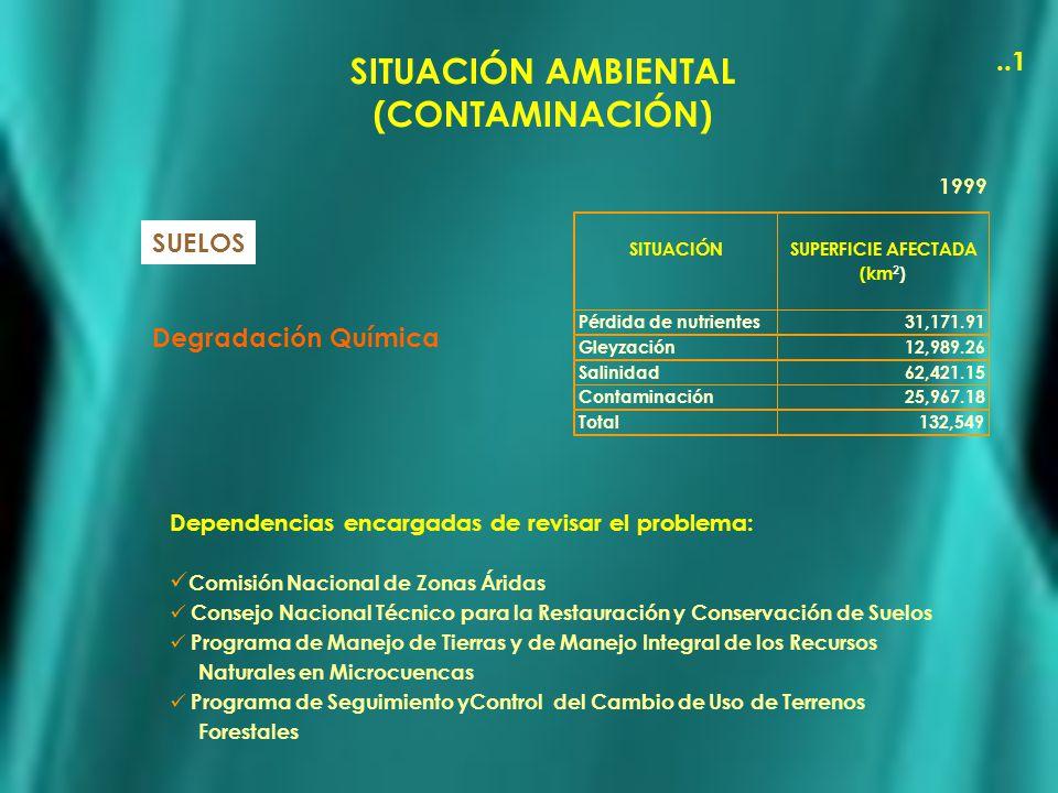 SITUACIÓN AMBIENTAL (CONTAMINACIÓN) SUELOS Degradación Química SITUACIÓN SUPERFICIE AFECTADA (km 2 ) Pérdida de nutrientes 31,171.91 Gleyzación 12,989