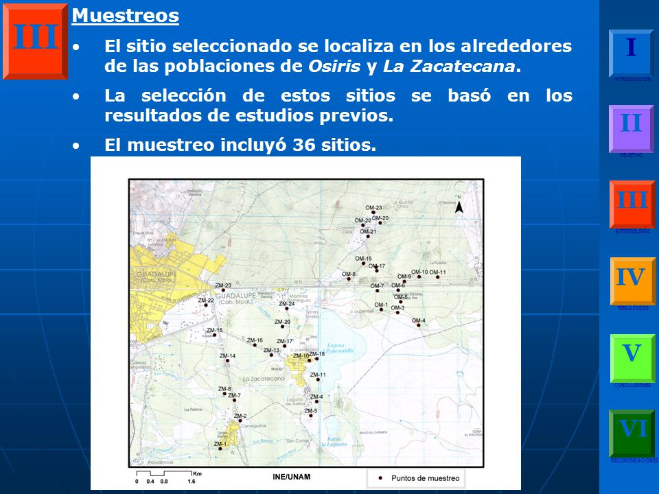 Muestreos El sitio seleccionado se localiza en los alrededores de las poblaciones de Osiris y La Zacatecana.