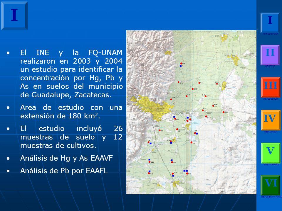 El INE y la FQ-UNAM realizaron en 2003 y 2004 un estudio para identificar la concentración por Hg, Pb y As en suelos del municipio de Guadalupe, Zacatecas.