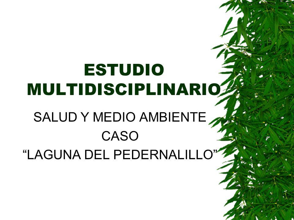 ESTUDIO MULTIDISCIPLINARIO SALUD Y MEDIO AMBIENTE CASO LAGUNA DEL PEDERNALILLO