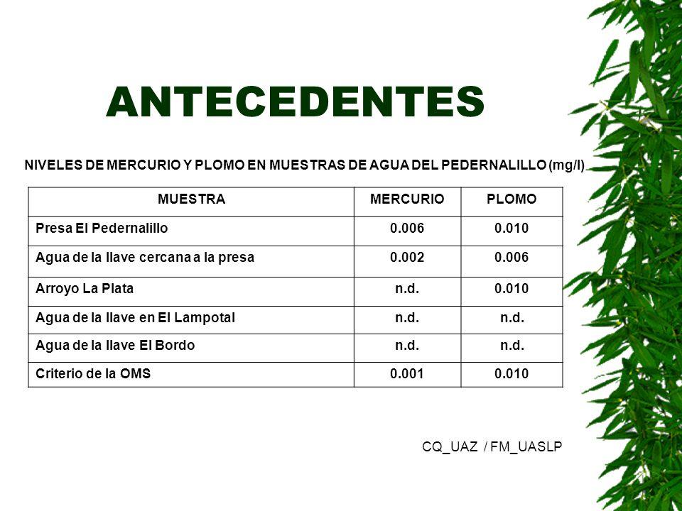 ANTECEDENTES NIVELES DE MERCURIO Y PLOMO EN MUESTRAS DE AGUA DEL PEDERNALILLO (mg/l) MUESTRAMERCURIOPLOMO Presa El Pedernalillo0.0060.010 Agua de la l