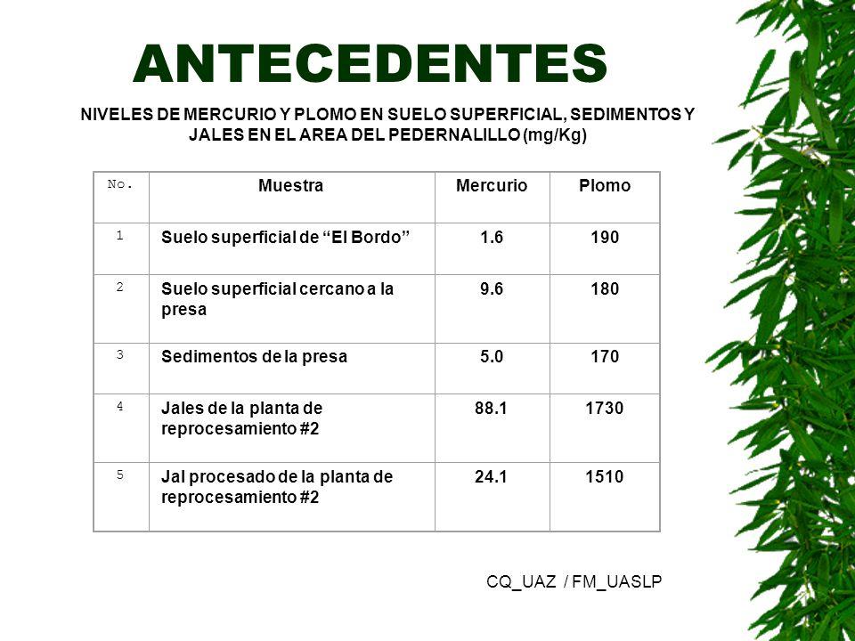 ANTECEDENTES NIVELES DE MERCURIO Y PLOMO EN SUELO SUPERFICIAL, SEDIMENTOS Y JALES EN EL AREA DEL PEDERNALILLO (mg/Kg) No. MuestraMercurioPlomo 1 Suelo