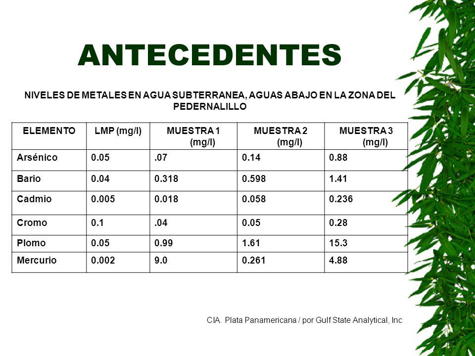 ANTECEDENTES ELEMENTOLMP (mg/l)MUESTRA 1 (mg/l) MUESTRA 2 (mg/l) MUESTRA 3 (mg/l) Arsénico0.05.070.140.88 Bario0.040.3180.5981.41 Cadmio0.0050.0180.05