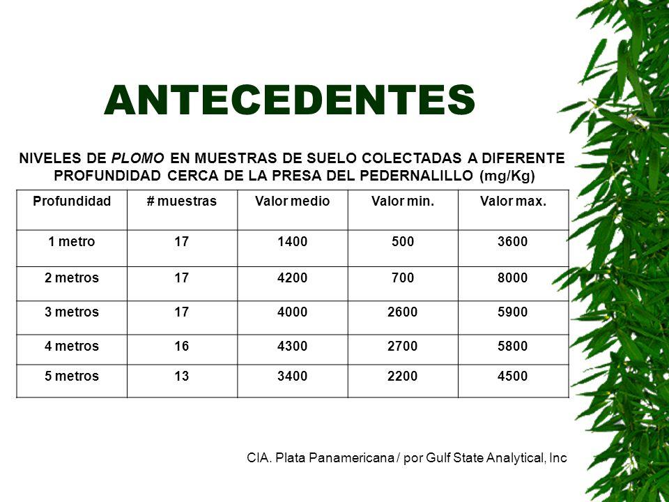 ANTECEDENTES NIVELES DE PLOMO EN MUESTRAS DE SUELO COLECTADAS A DIFERENTE PROFUNDIDAD CERCA DE LA PRESA DEL PEDERNALILLO (mg/Kg) Profundidad# muestras