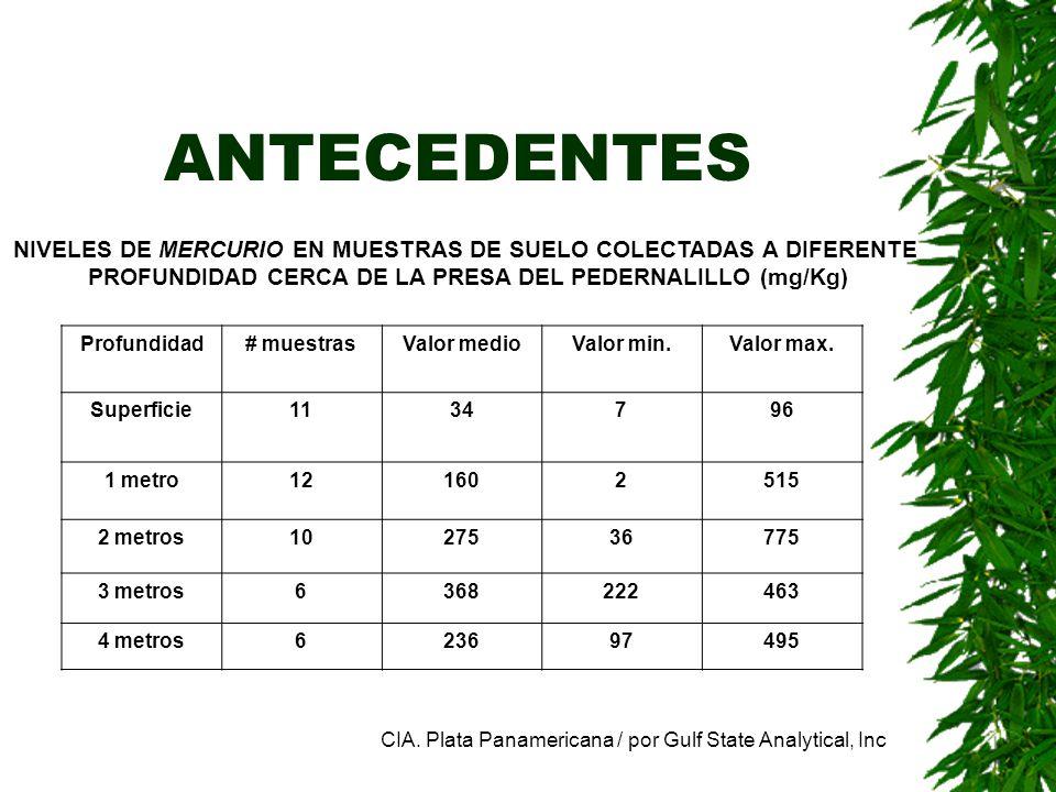 ANTECEDENTES NIVELES DE MERCURIO EN MUESTRAS DE SUELO COLECTADAS A DIFERENTE PROFUNDIDAD CERCA DE LA PRESA DEL PEDERNALILLO (mg/Kg) Profundidad# muest