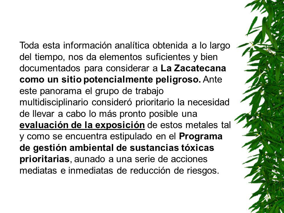 Toda esta información analítica obtenida a lo largo del tiempo, nos da elementos suficientes y bien documentados para considerar a La Zacatecana como
