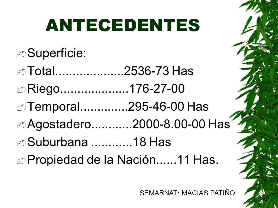 ANTECEDENTES Superficie: Total....................2536-73 Has Riego....................176-27-00 Temporal..............295-46-00 Has Agostadero.......