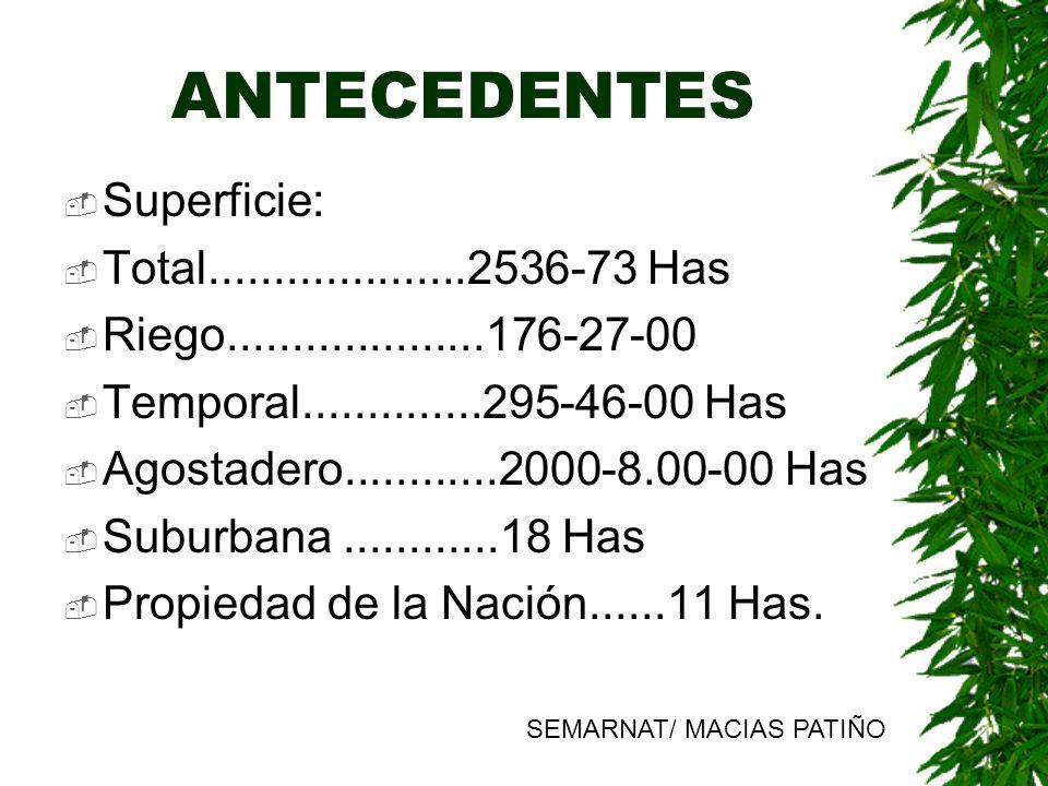 ANTECEDENTES NIVELES DE MERCURIO EN MUESTRAS DE SUELO COLECTADAS A DIFERENTE PROFUNDIDAD CERCA DE LA PRESA DEL PEDERNALILLO (mg/Kg) Profundidad# muestrasValor medioValor min.Valor max.
