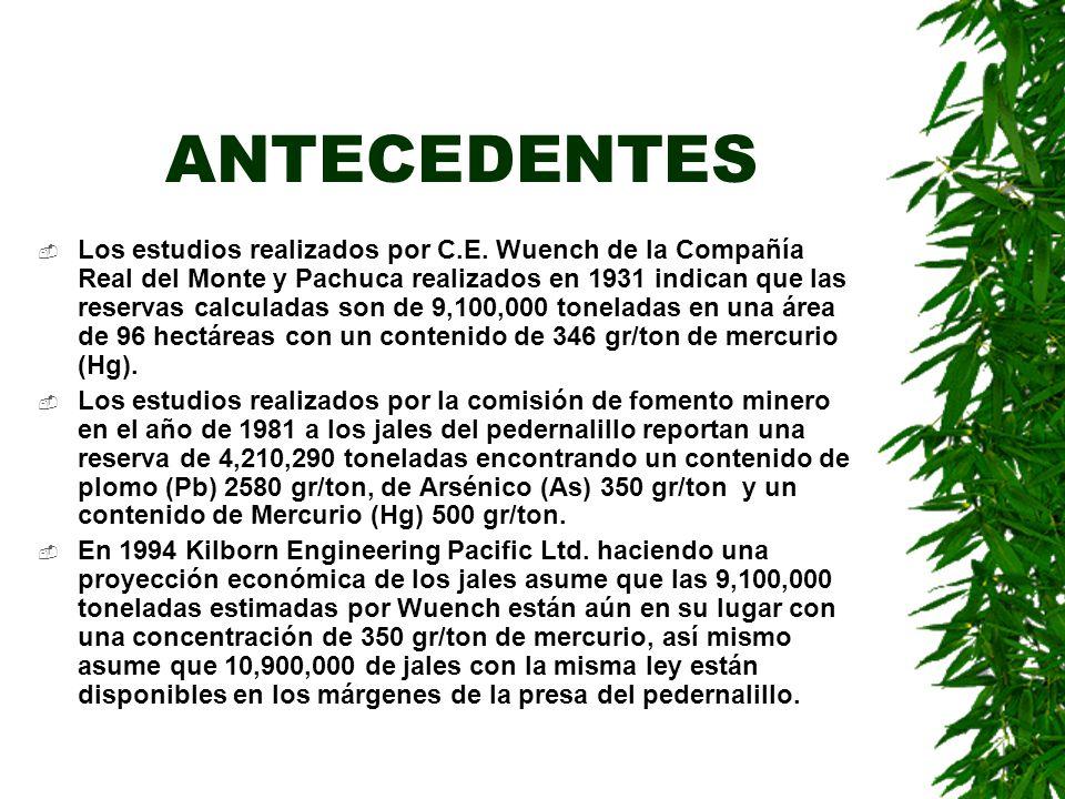 ANTECEDENTES Los estudios realizados por C.E. Wuench de la Compañía Real del Monte y Pachuca realizados en 1931 indican que las reservas calculadas so